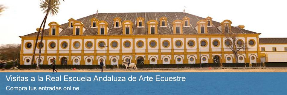 Visitas a la Real Escuela Andaluza de Arte Ecuestre