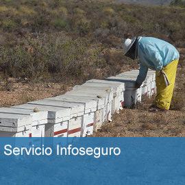 Servicio Infoseguro
