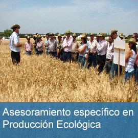 Asesoramiento producción ecológica