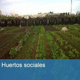 Huertos Sociales