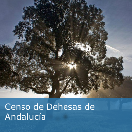 Censo de Dehesas de Andalucía