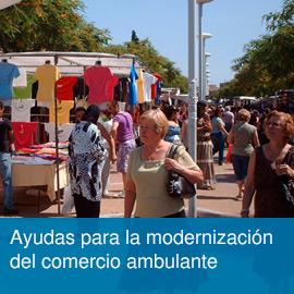 Subvenciones a los Ayuntamientos para la mejora y modernización del comercio ambulante (modalidad CAM)