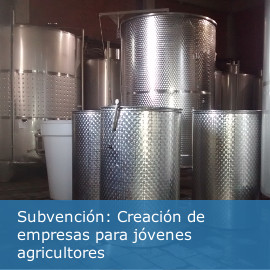 Subvención: Creación de empresas para jóvenes agricultores submedida 6.1