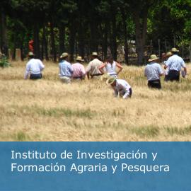 Instituto de Investigación y Formación Agraria y Pesquera (IFAPA)