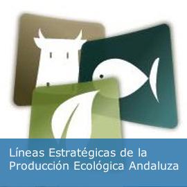 Líneas Estratégicas de la Producción Ecológica Andaluza
