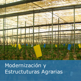 Modernización y Estructuras Agrarias