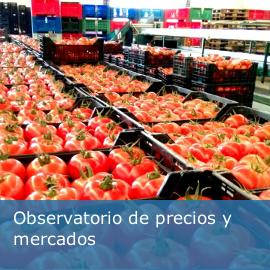 Observatorio de precios y mercados 2