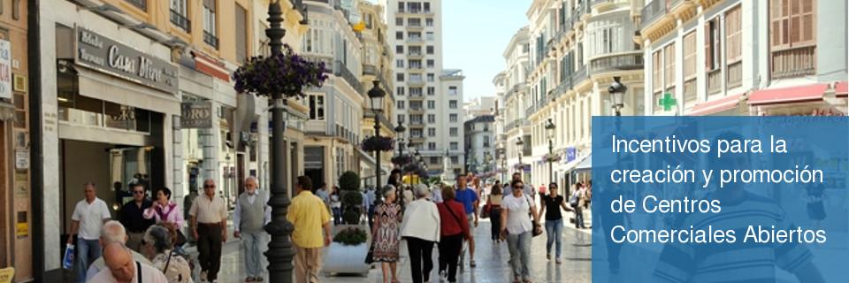 Incentivos para la creación y promoción de Centros Comerciales Abiertos
