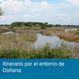 Unidad didáctica: Itinerario por Doñana