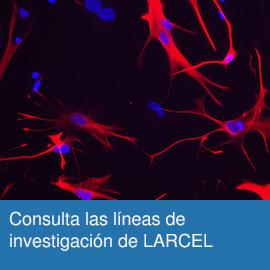 Consulta las líneas de investigación de LARCEL