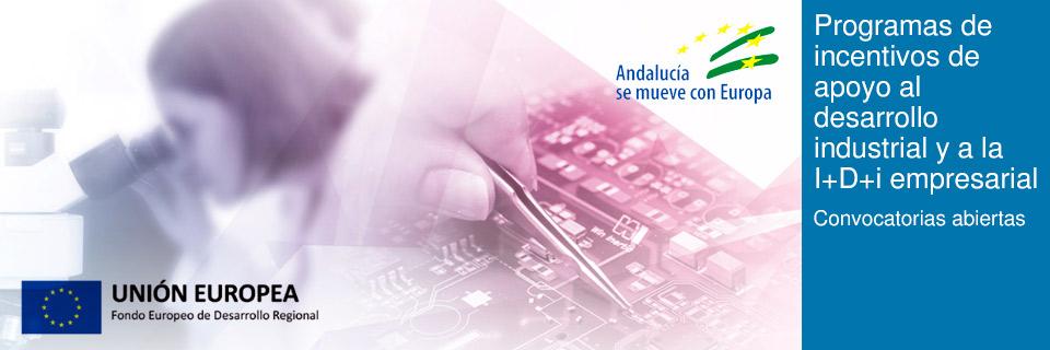 Programas de incentivos de apoyo al desarrollo industrial y a la I+D+i empresarial