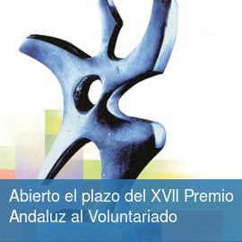 Premio Andaluz al Voluntariado