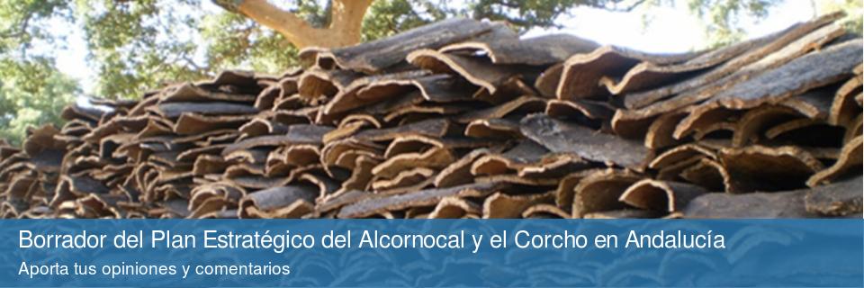Borrador del Plan Estratégico del Alcornocal y el Corcho en Andalucía