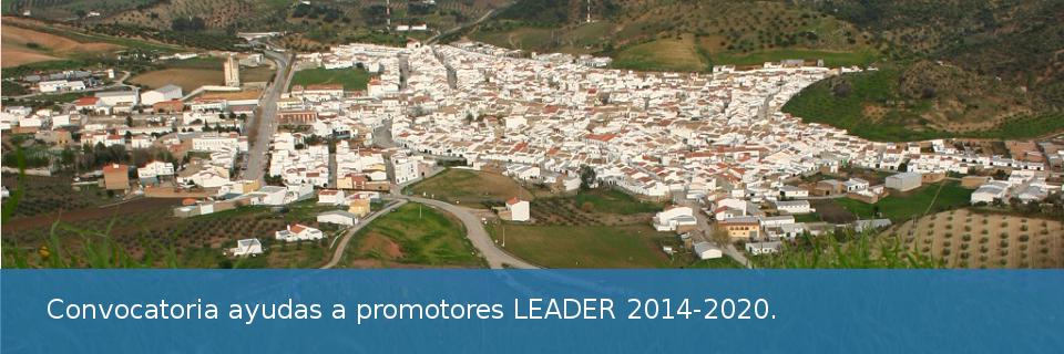 Ayudas previstas en las Estrategias de Desarrollo Local Leader en el marco de la submedida 19.2 del Programa de Desarrollo Rural de Andalucía 2014-2020