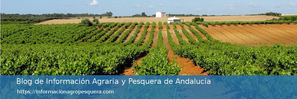 Blog de información agraria y pesquera de Andalucía