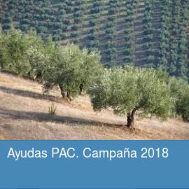 Ayudas PAC. Campaña 2018