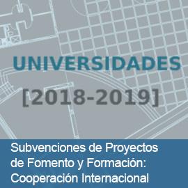 Subvenciones de Proyectos de Fomento y Formación: Cooperación Internacional