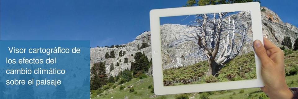 Visor cartográfico de los efectos del cambio climático sobre el paisaje