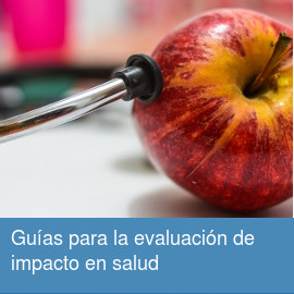 Guías metodológicas para la evaluación de impacto en salud