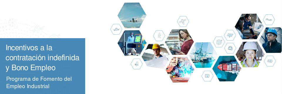 Programa de Fomento del Empleo Industrial y Medidas de Inserción Laboral en Andalucía y Bono Empleo