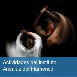 Actividades del Instituto Andaluz del Flamenco