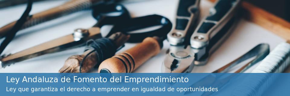 Ley Andaluza de Fomento del Emprendimiento