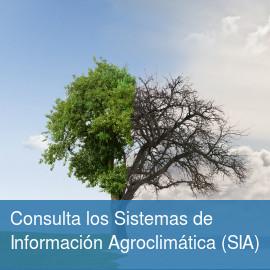 Sistemas de Información Agroclimática