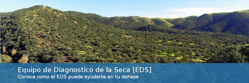Equipo de Diagnóstico de la Seca de Andalucía [EDS]