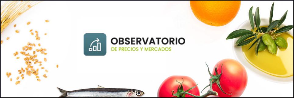 Observatorio de Precios y Mercados. Website