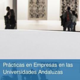 Prácticas en Empresas en las Universidades Andaluzas