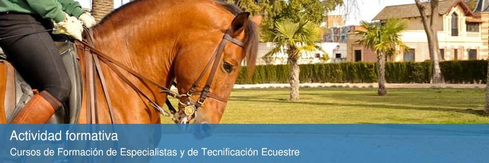 Actividad formativa del la Fundación Real Escuela Andaluza de Arte Ecuestre