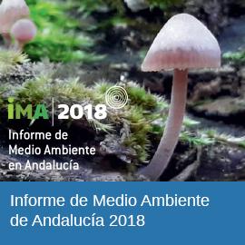 IMA 2018 - Informe de Medio Ambiente de Andalucía