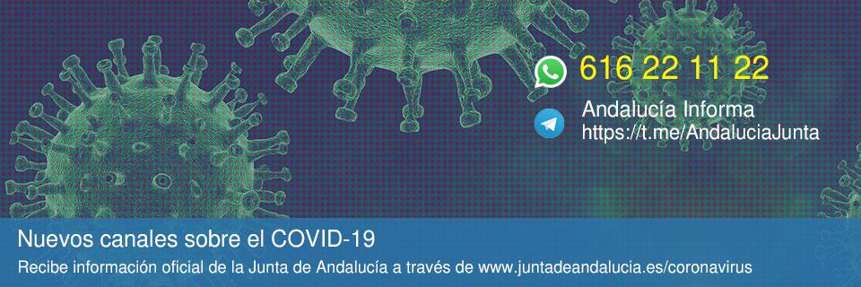 Nuevos canales de información sobre Coronavirus