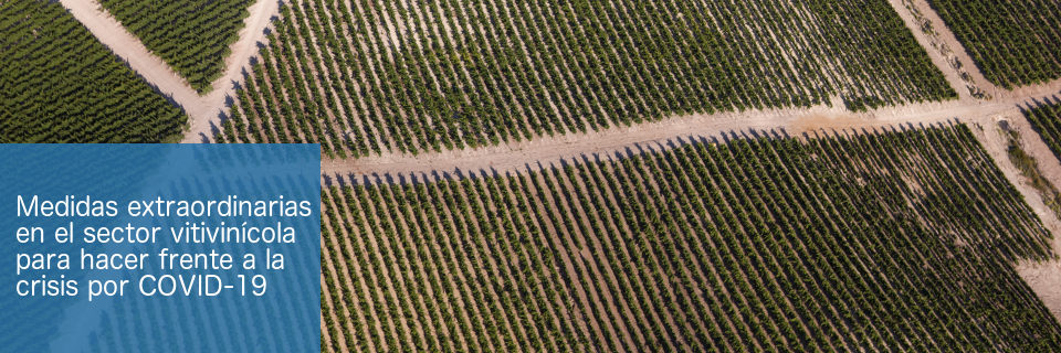 Medidas extraordinarias en el sector vitivinícola para hacer frente a la crisis por el COVID-19