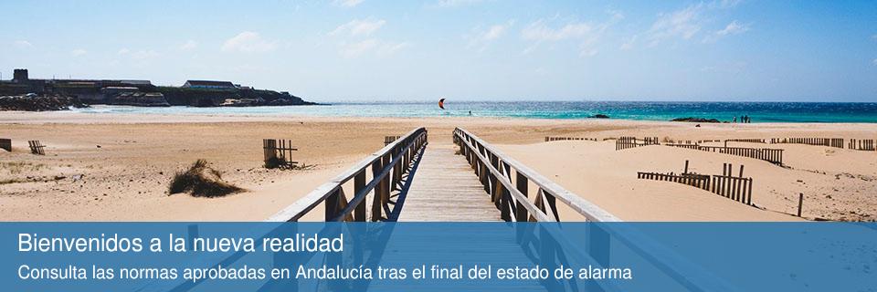 Normas de la nueva realidad aprobadas en Andalucía tras el estado de alarma