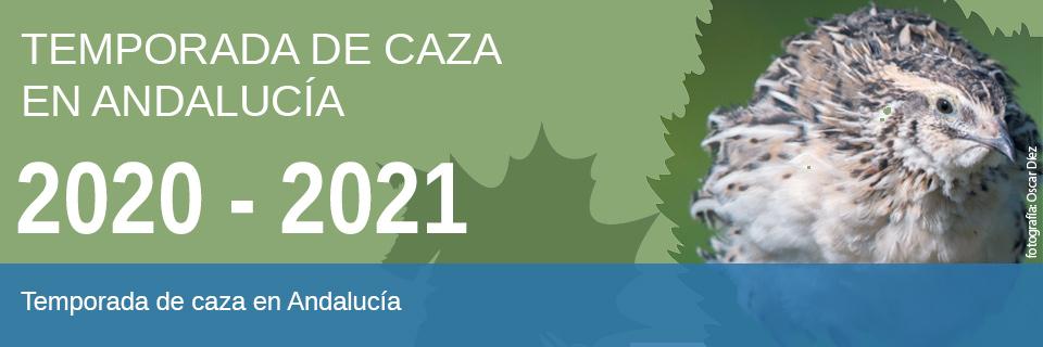 Temporada de caza en Andalucía [2020/2021]