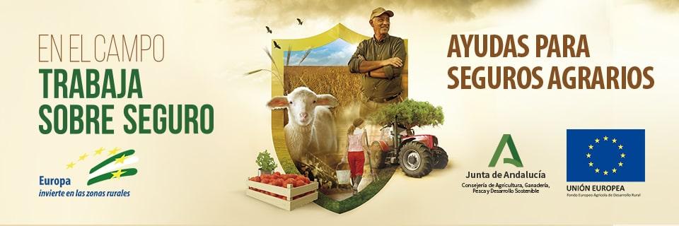 """Seguros Agrarios: """"En el campo trabaja sobre seguro"""". Portada"""