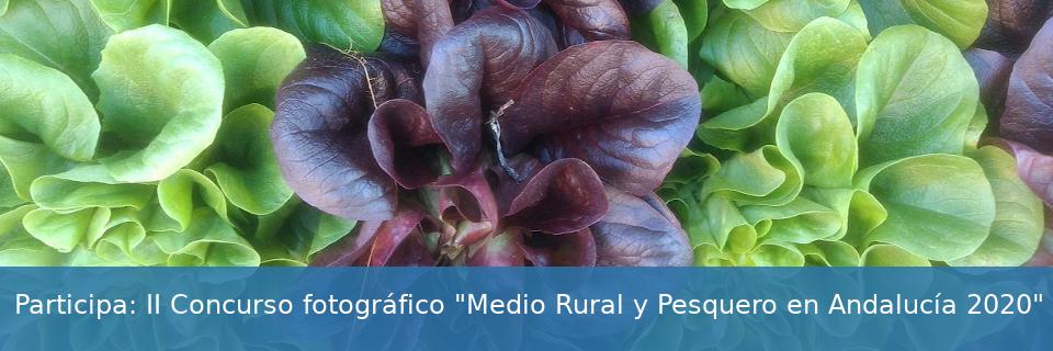 """Concurso fotográfico """"Medio Rural y Pesquero en Andalucía 2020"""""""