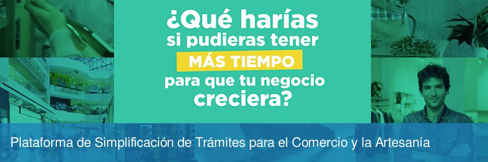 Plataforma de Simplificación de Trámites para el Comercio y la Artesanía