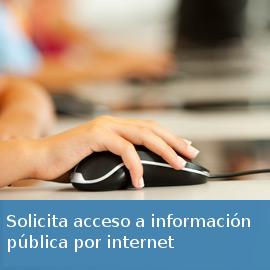 Solicitar información a través de internet