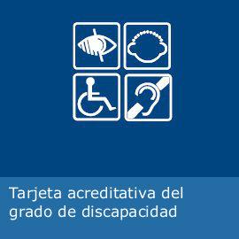 193 Reas De Actividad Personas Con Discapacidad Consejer 237 A