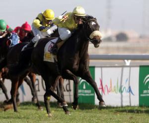 Jimetes montando a caballo durante una carrera