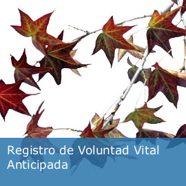 Registro de Voluntad Vital Anticipada