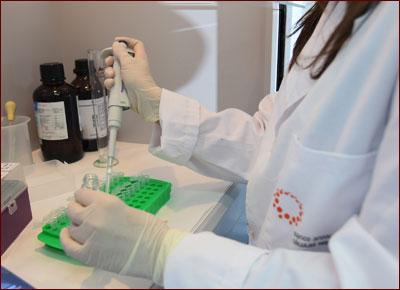 Imagen de laboratorio