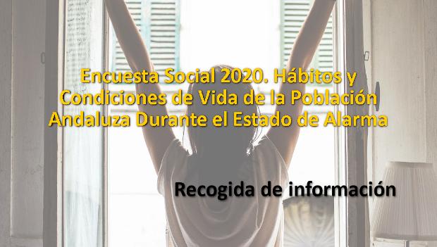 Encuesta Social 2020. Hábitos y Condiciones de Vida de la Población Andaluza Durante el Estado de Alarma
