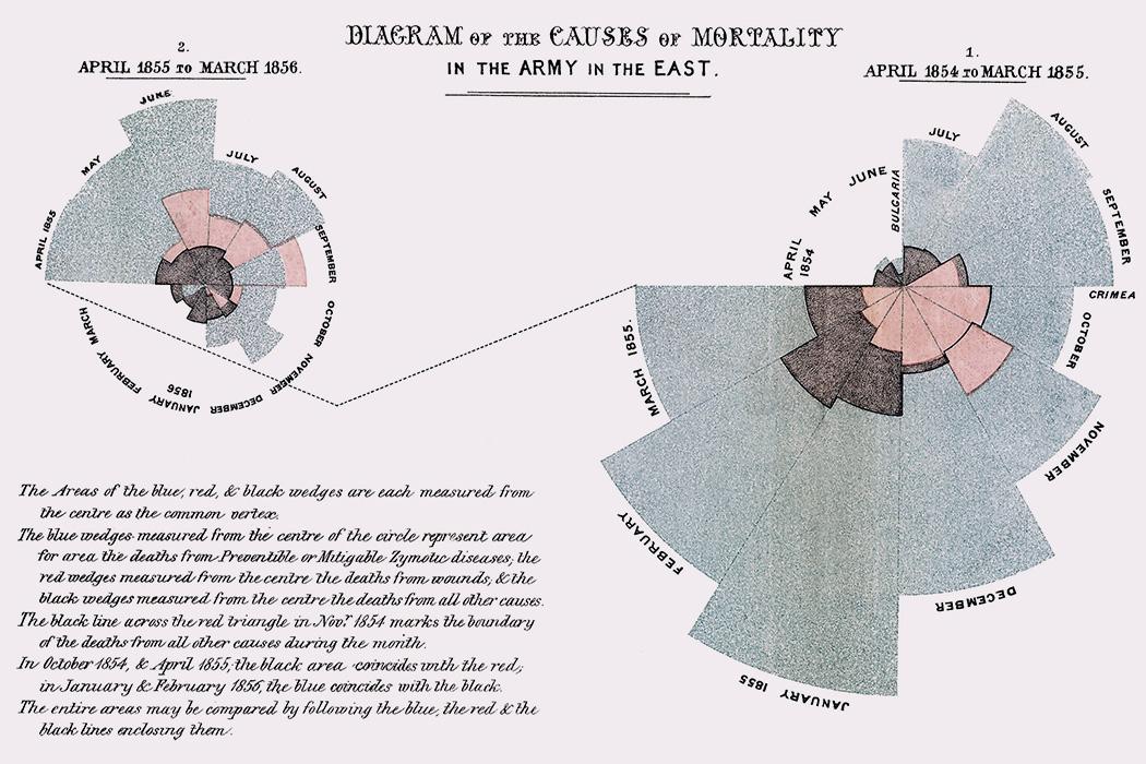 Diagrama de las causas de mortalidad