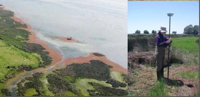 Dinámica hídrica en las marismas de Doñana