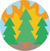 Enlace - Incendios Forestales