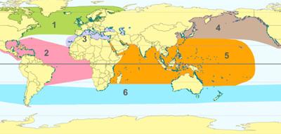 Regiones de distribución de las plantas marinas