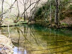 /medioambiente/portal/documents/20151/423702/Guadalora_rio.jpg/19555702-3cbf-f2c8-e330-8b32339321c4?t=1560158286000